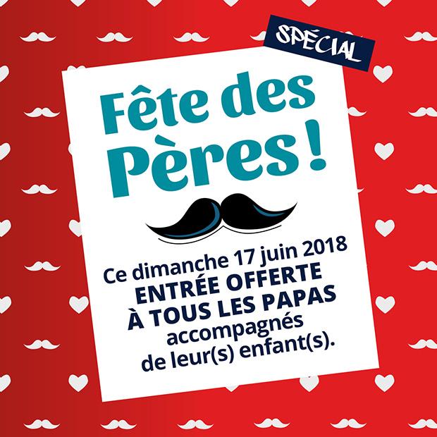 Offre Fête des pères Salto Trampoline Arena-Mougins-Aix